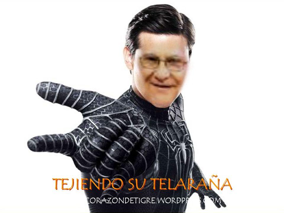 TEJIENDO SU TELARAÑA WWW.CORAZONDETIGRE.WORDPRESS.COM