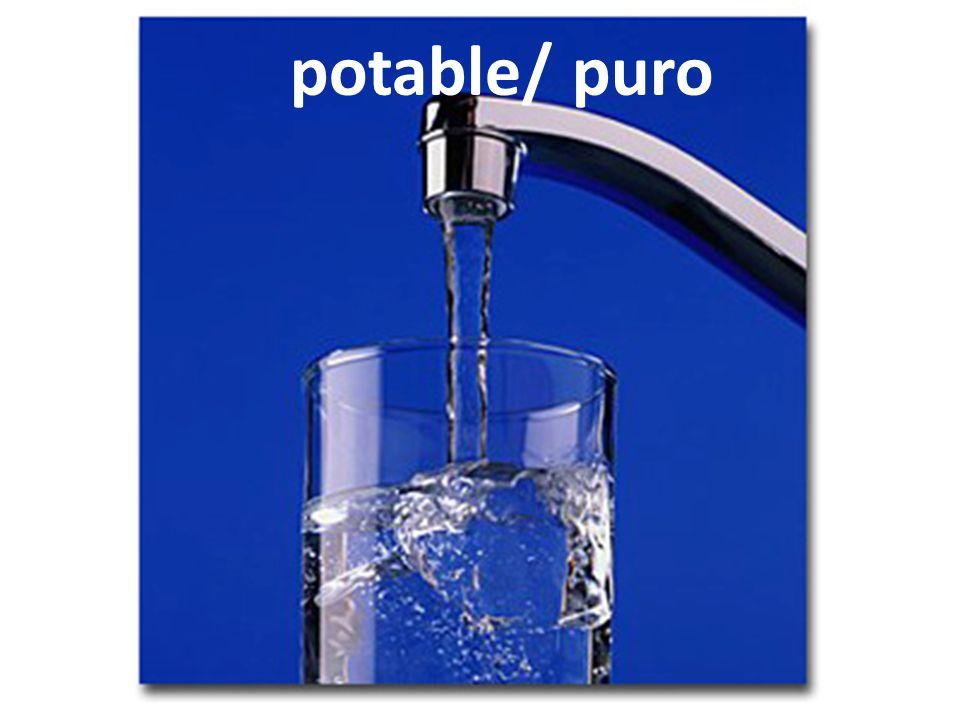 potable/ puro