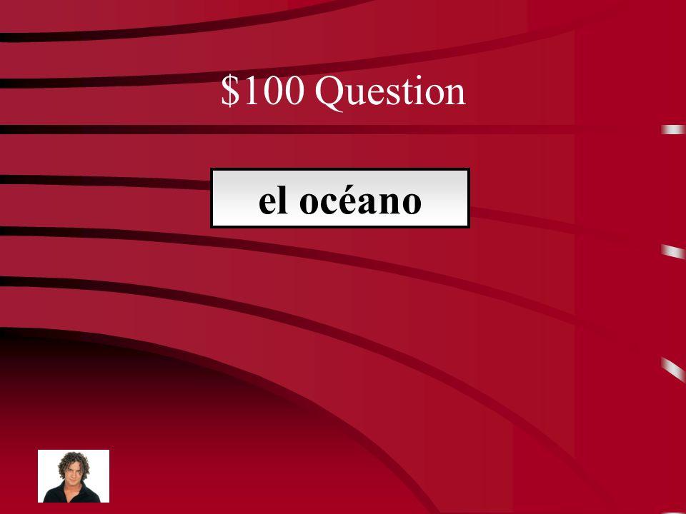 $500 Answer apodo