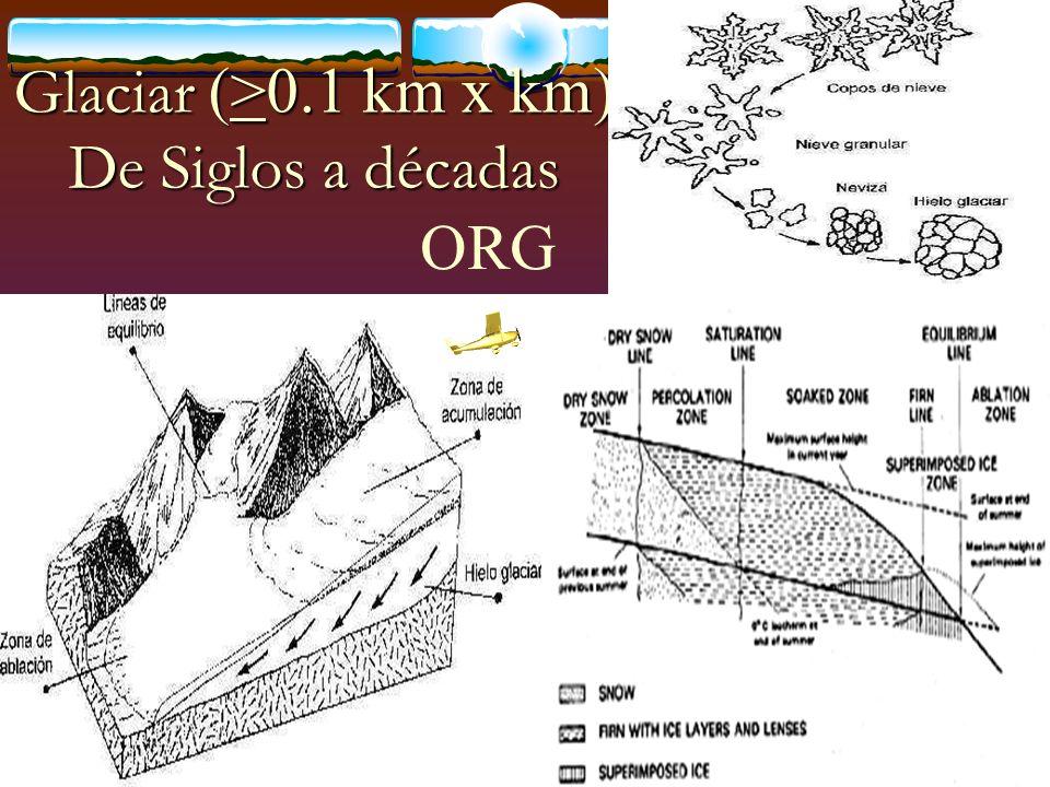 Glaciar (>0.1 km x km) De Siglos a décadas ORG
