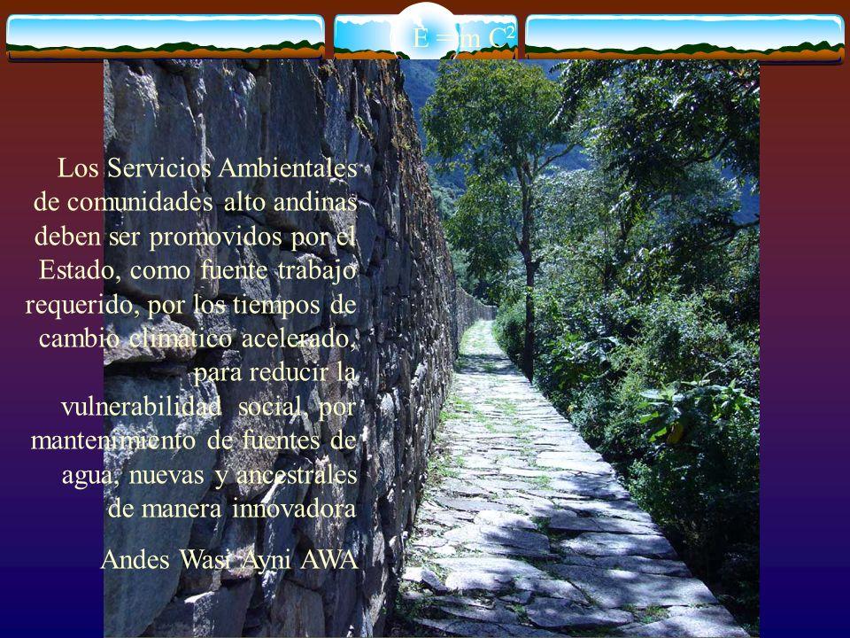 E = m C 2 Los Servicios Ambientales de comunidades alto andinas deben ser promovidos por el Estado, como fuente trabajo requerido, por los tiempos de