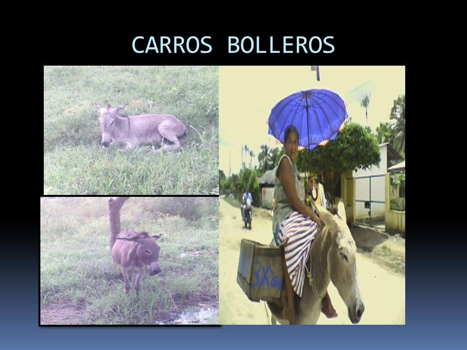 CARROS BOLLEROS