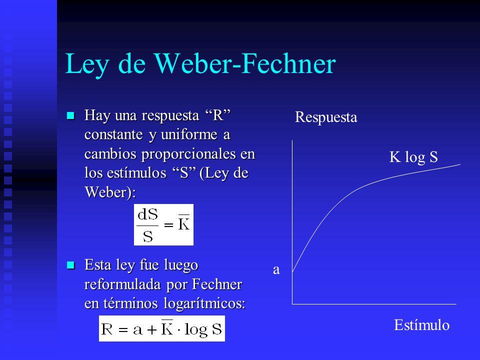 Ley de Weber-Fechner Hay una respuesta R constante y uniforme a cambios proporcionales en los estímulos S (Ley de Weber): Hay una respuesta R constant