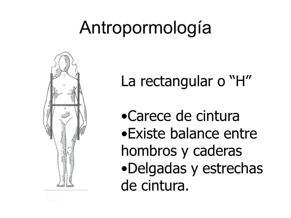 Antropormología La rectangular o H Carece de cintura Existe balance entre hombros y caderas Delgadas y estrechas de cintura.