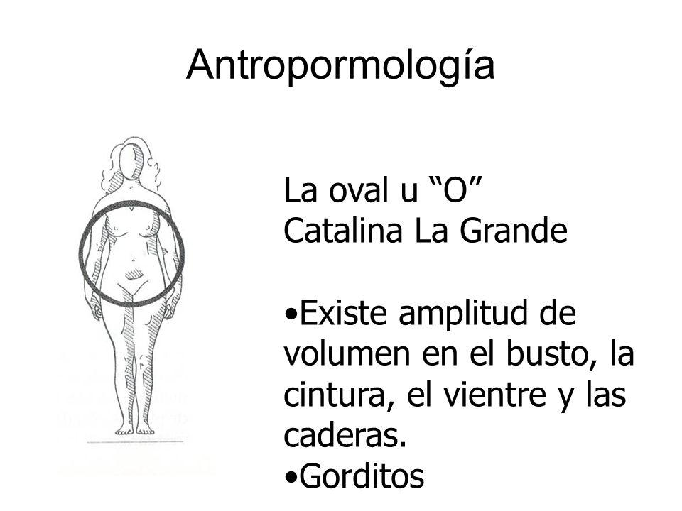 Antropormología La oval u O Catalina La Grande Existe amplitud de volumen en el busto, la cintura, el vientre y las caderas. Gorditos