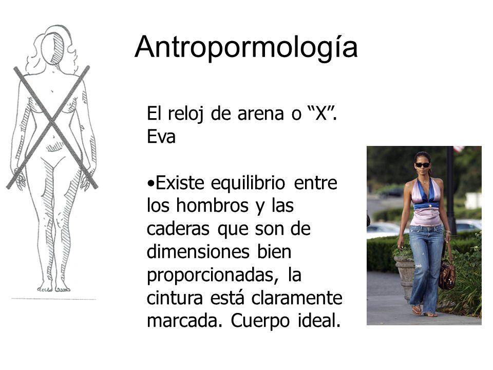Antropormología El reloj de arena o X. Eva Existe equilibrio entre los hombros y las caderas que son de dimensiones bien proporcionadas, la cintura es