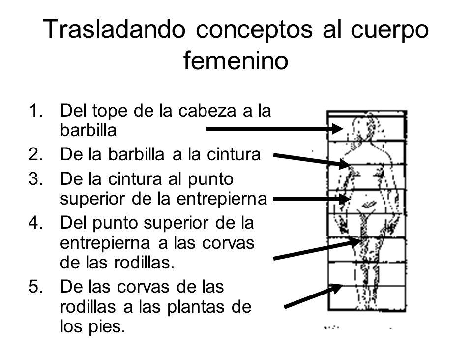 Trasladando conceptos al cuerpo femenino 1.Del tope de la cabeza a la barbilla 2.De la barbilla a la cintura 3.De la cintura al punto superior de la e