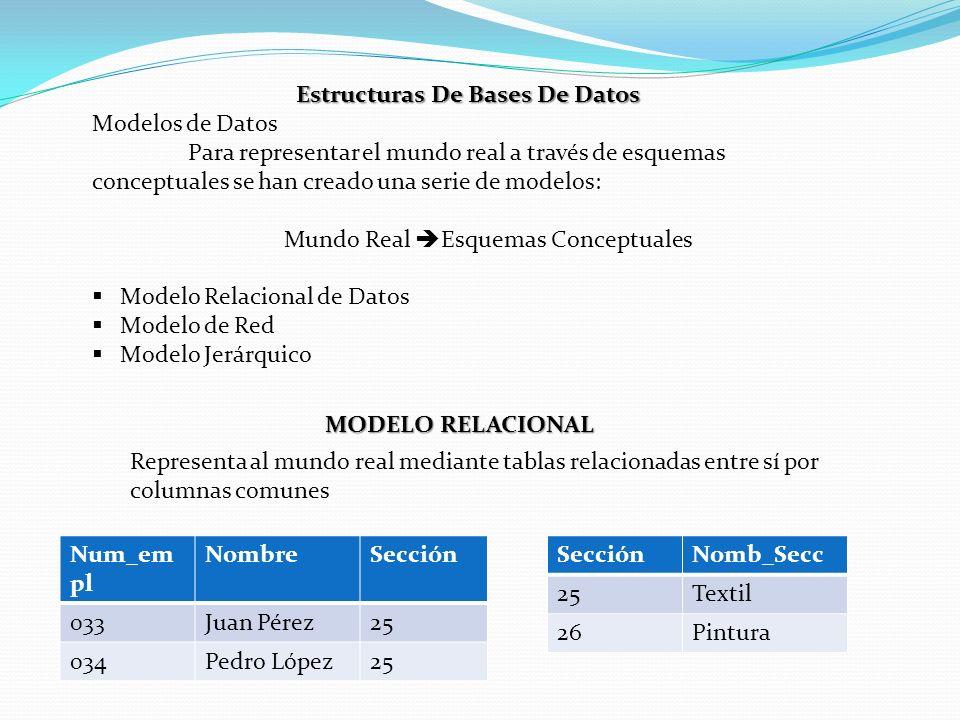 Estructuras De Bases De Datos Modelos de Datos Para representar el mundo real a través de esquemas conceptuales se han creado una serie de modelos: Mu