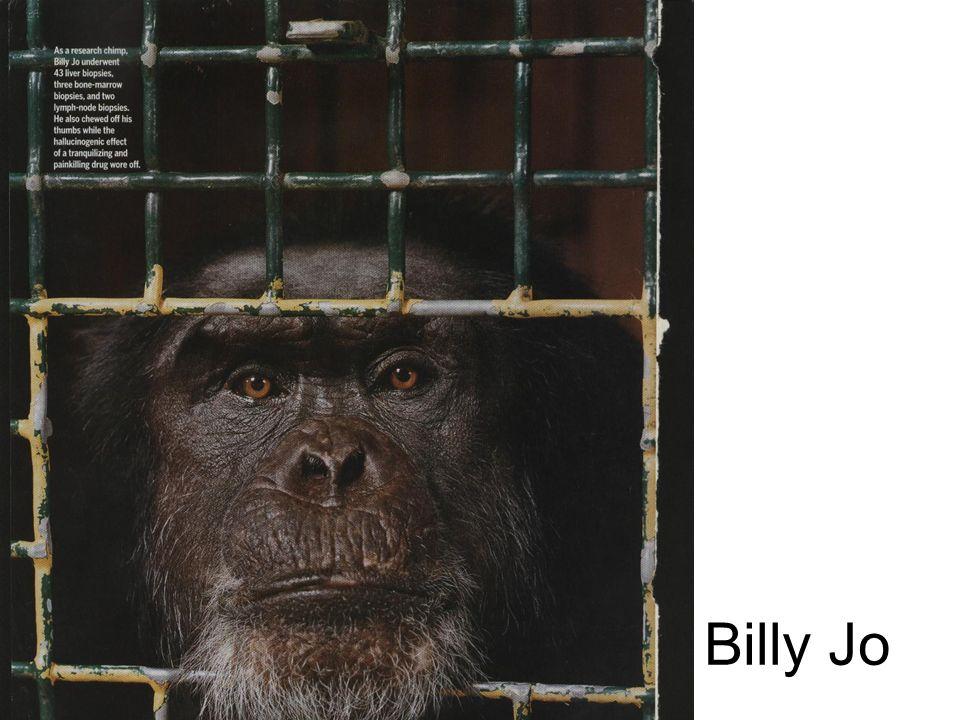 Billy Jo
