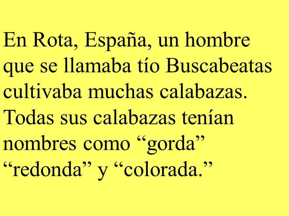 En Rota, España, un hombre que se llamaba tío Buscabeatas cultivaba muchas calabazas.