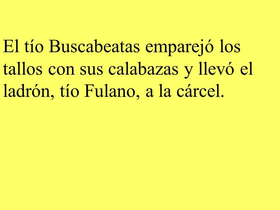 El tío Buscabeatas emparejó los tallos con sus calabazas y llevó el ladrón, tío Fulano, a la cárcel.