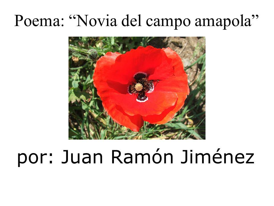 por: Juan Ramón Jiménez Poema: Novia del campo amapola