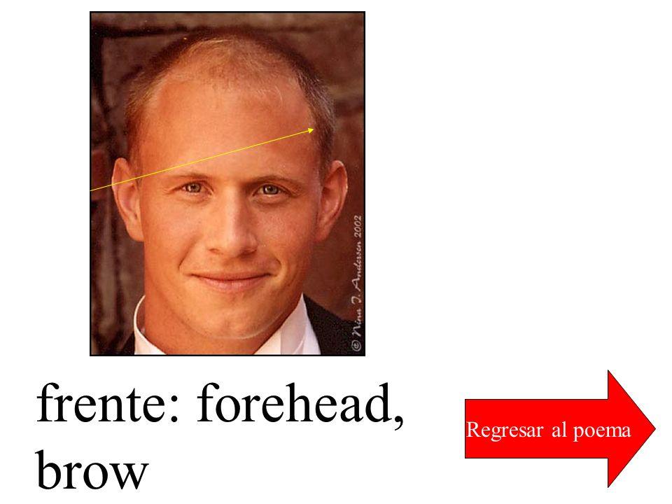 frente: forehead, brow Regresar al poema