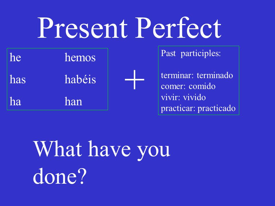 Present Perfect he hemos has habéis hahan Past participles: terminar: terminado comer: comido vivir: vivido practicar: practicado + What have you done?