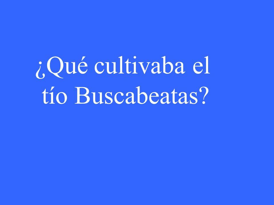 ¿Qué cultivaba el tío Buscabeatas?