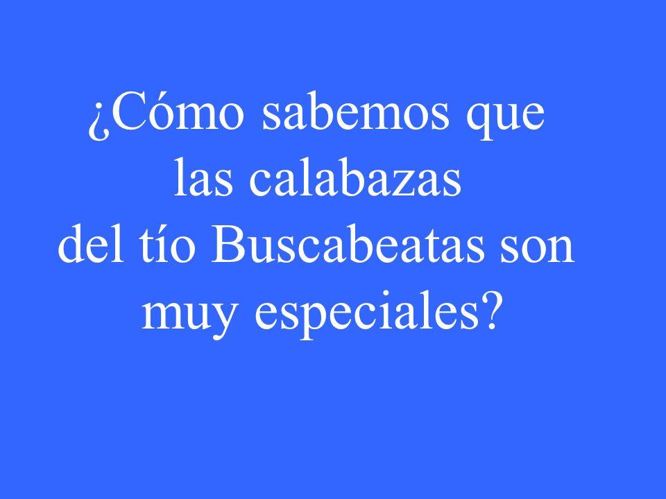 ¿Cómo sabemos que las calabazas del tío Buscabeatas son muy especiales?