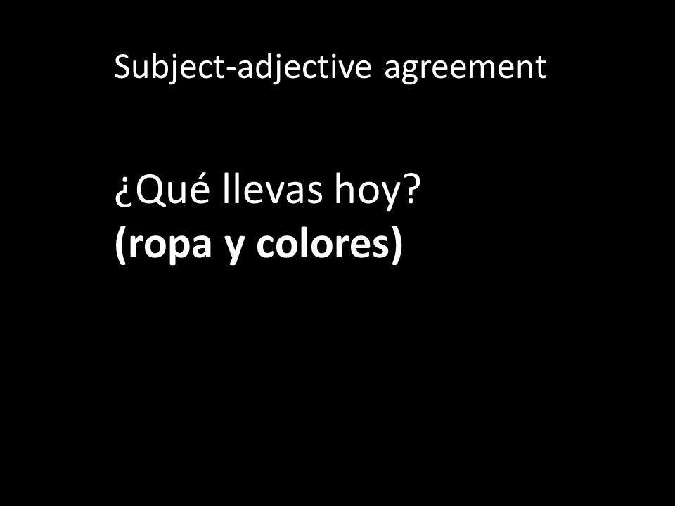 Subject-adjective agreement ¿Qué lleva tu profesor/a de español?