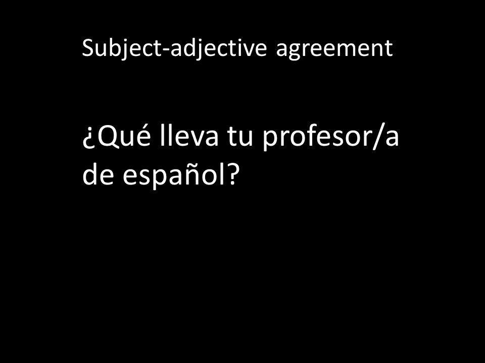 Subject-adjective agreement Describe tu mejor amigo/a.