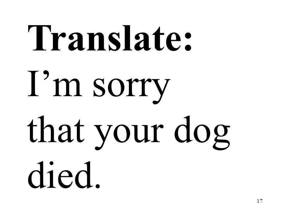 17 Translate: Im sorry that your dog died.