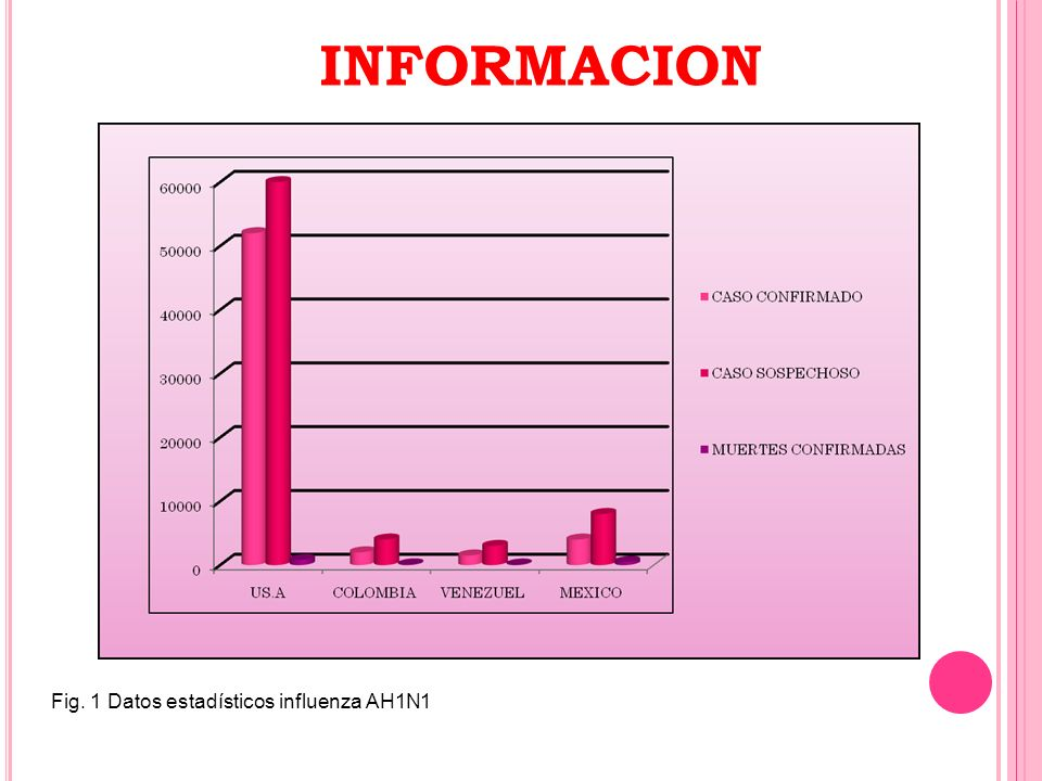 Fig. 1 Datos estadísticos influenza AH1N1 INFORMACION