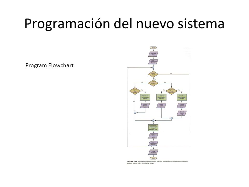 Programación del nuevo sistema Program Flowchart