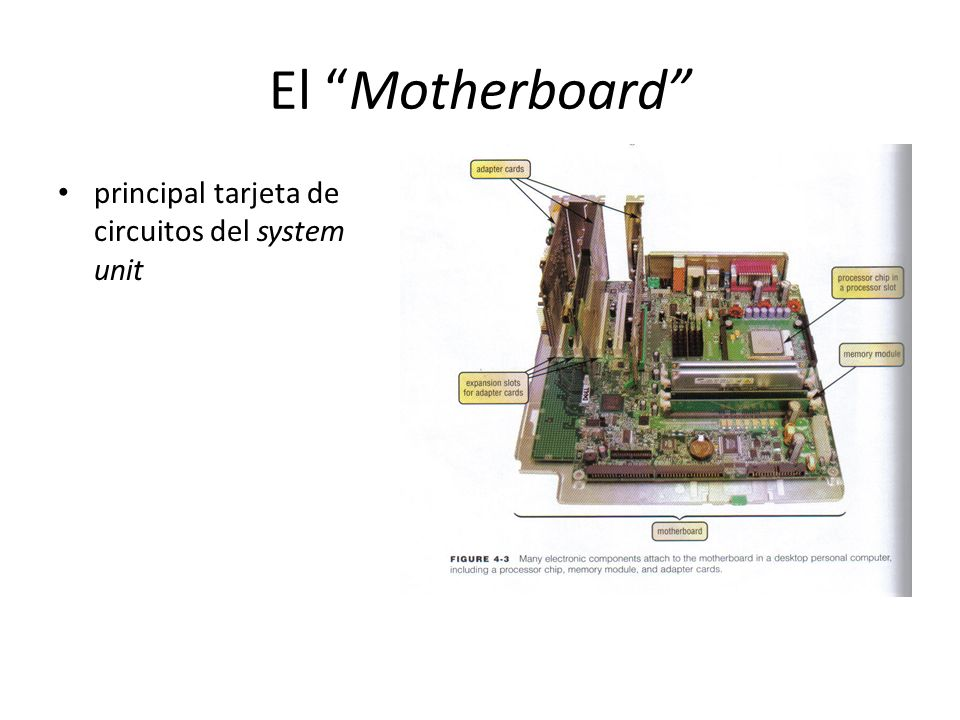 Expansion Slots & Adapter Cards Expansion Slot orificio en el motherboard donde se instala un adapter card Adapter Card tarjeta de circuitos que mejora las funciones de algún componente del system unit y/o provee conección a periferales