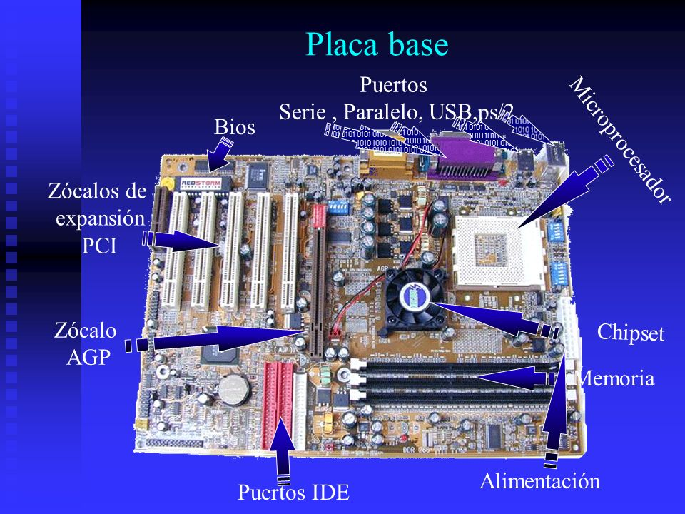 Placa base Microprocesador Memoria Puertos IDE Alimentación Puertos Serie, Paralelo, USB,ps/2 Zócalos de expansión PCI Zócalo AGP Chipset Bios