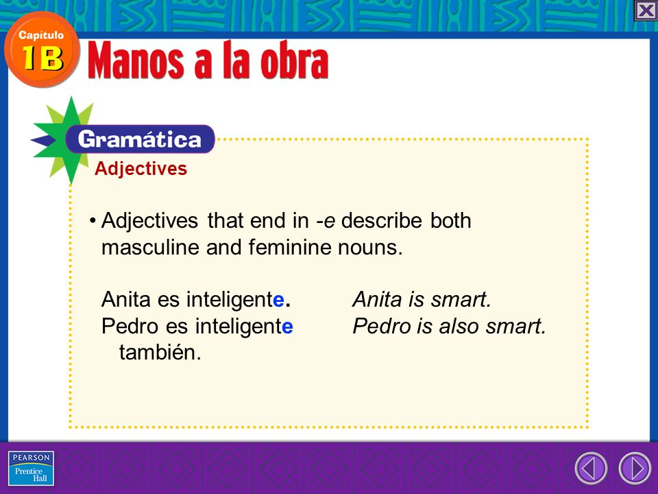 Adjectives that end in -e describe both masculine and feminine nouns. Anita es inteligente. Anita is smart. Pedro es inteligente Pedro is also smart.