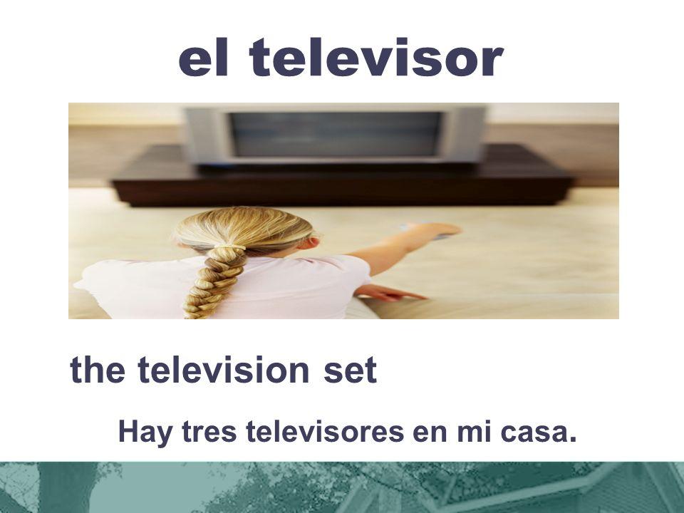 el televisor the television set Hay tres televisores en mi casa.