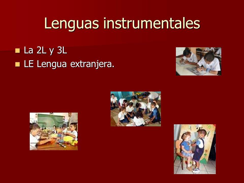 Lenguas instrumentales La 2L y 3L La 2L y 3L LE Lengua extranjera. LE Lengua extranjera.
