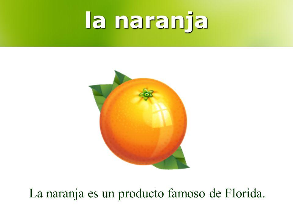 la naranja La naranja es un producto famoso de Florida.