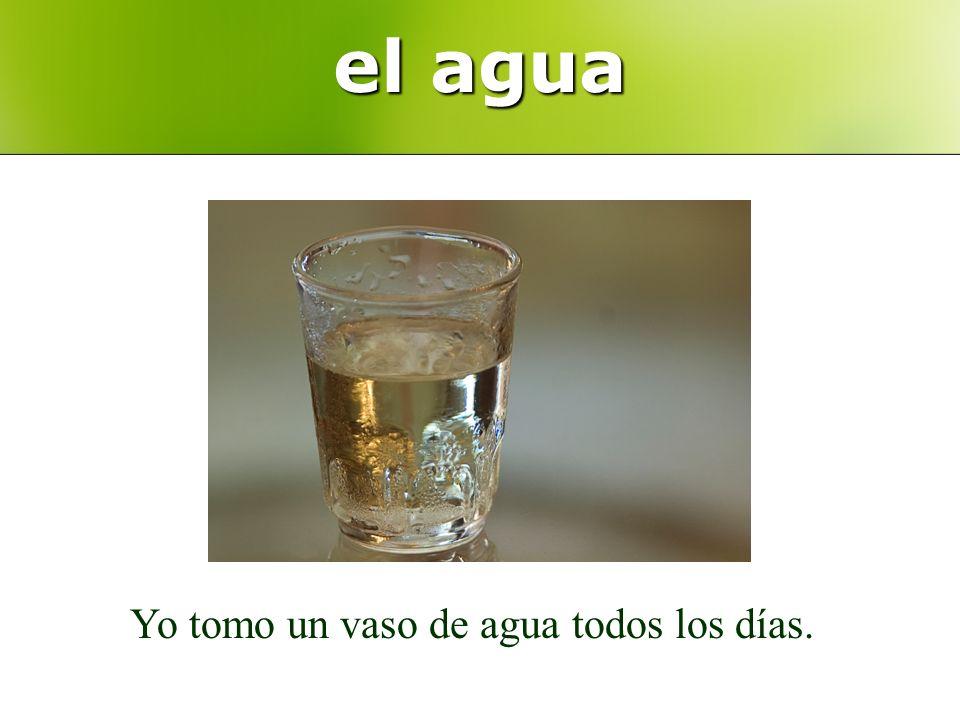 el agua Yo tomo un vaso de agua todos los días.