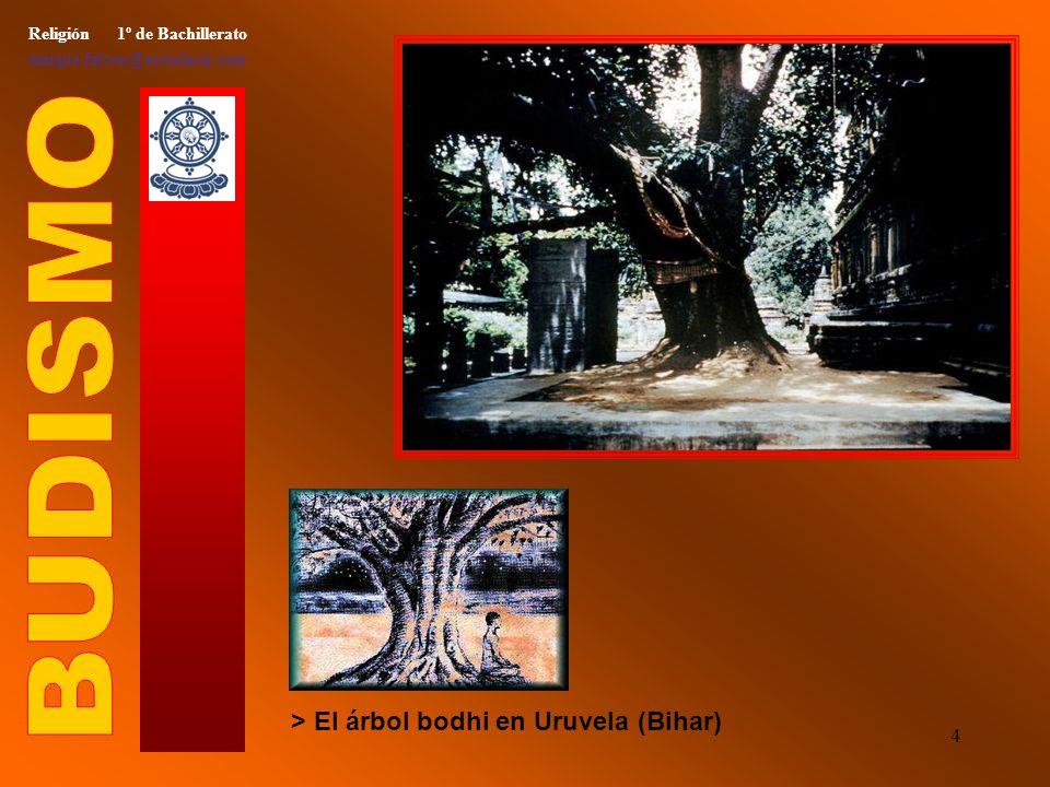 3 Religión 1º de Bachillerato enrique.falcon@escuelassj.com > Siddharta el asceta, consumido