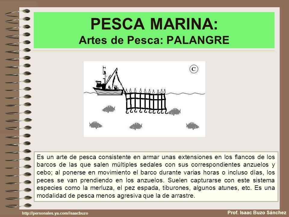 PESCA MARINA: Artes de Pesca: PALANGRE Prof. Isaac Buzo Sánchez Es un arte de pesca consistente en armar unas extensiones en los flancos de los barcos