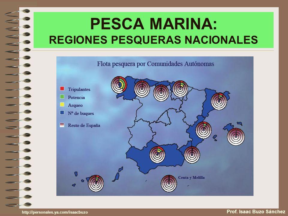 PESCA MARINA: REGIONES PESQUERAS NACIONALES Prof. Isaac Buzo Sánchez http://personales.ya.com/isaacbuzo