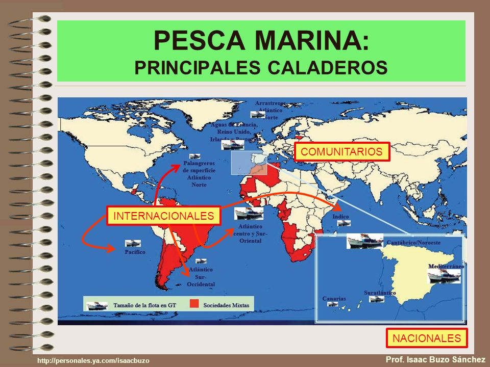 PESCA MARINA: PRINCIPALES CALADEROS Prof.