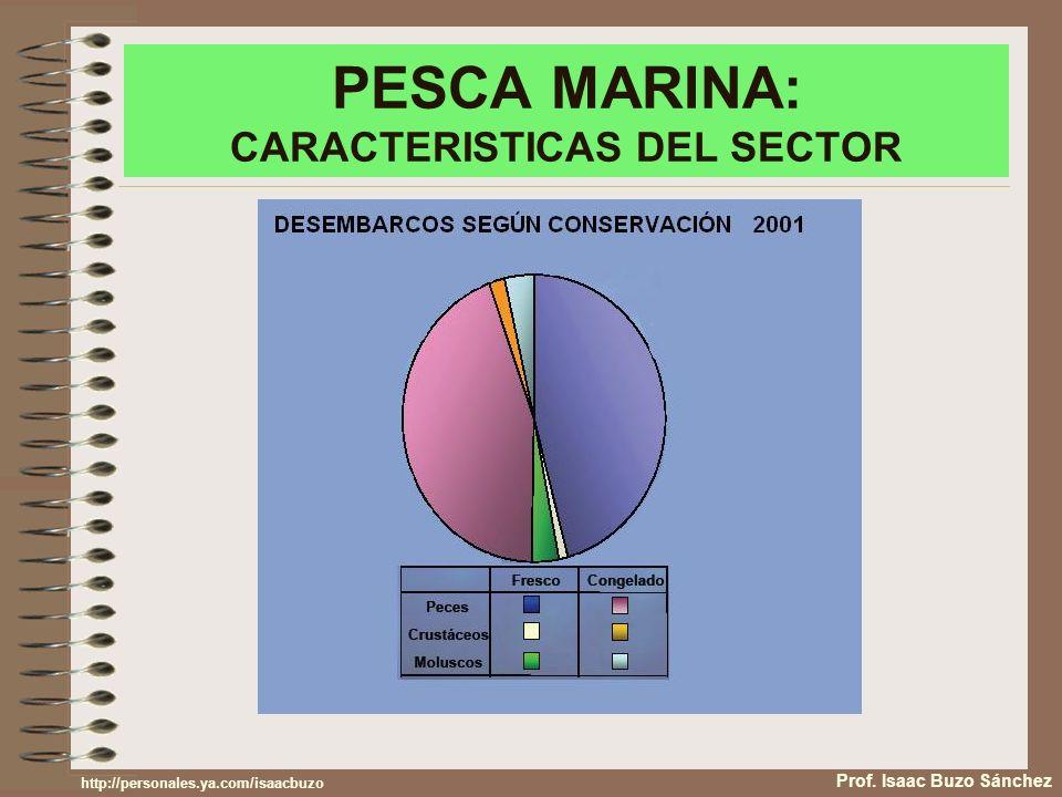 PESCA MARINA: CARACTERISTICAS DEL SECTOR Prof. Isaac Buzo Sánchez http://personales.ya.com/isaacbuzo
