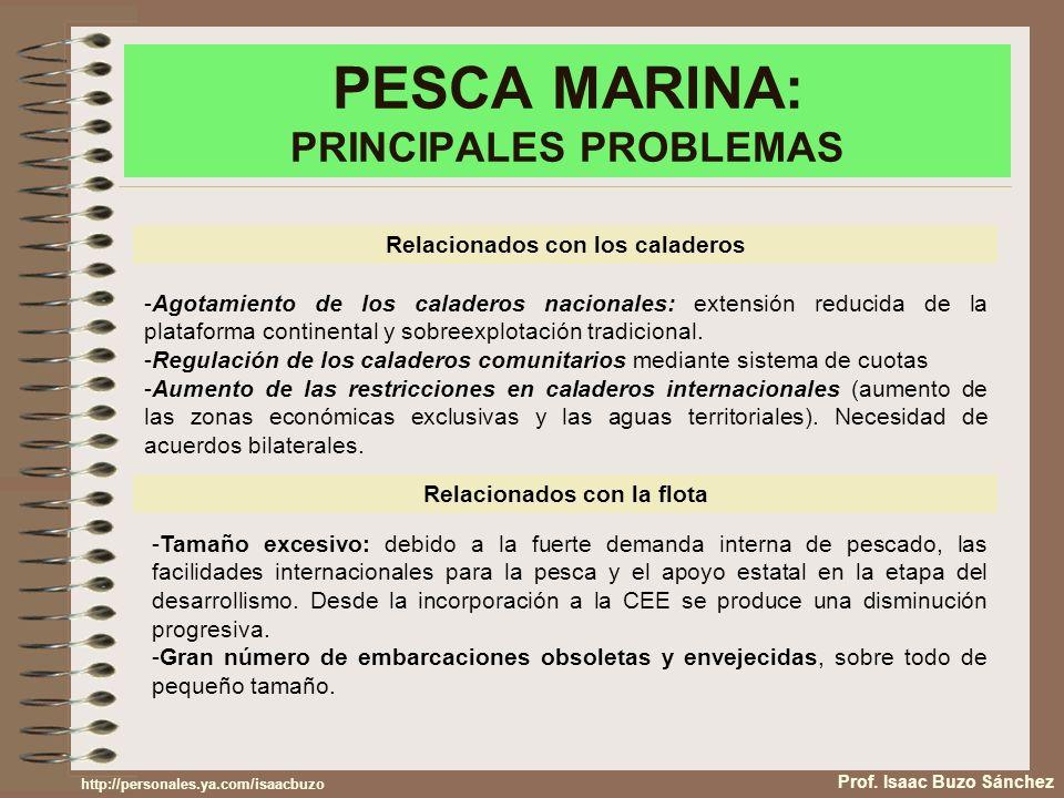 PESCA MARINA: PRINCIPALES PROBLEMAS Prof. Isaac Buzo Sánchez Relacionados con los caladeros -Agotamiento de los caladeros nacionales: extensión reduci