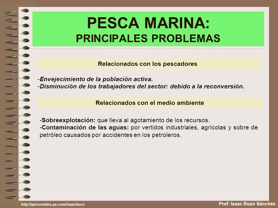 PESCA MARINA: PRINCIPALES PROBLEMAS Prof. Isaac Buzo Sánchez Relacionados con los pescadores -Envejecimiento de la población activa. -Disminución de l