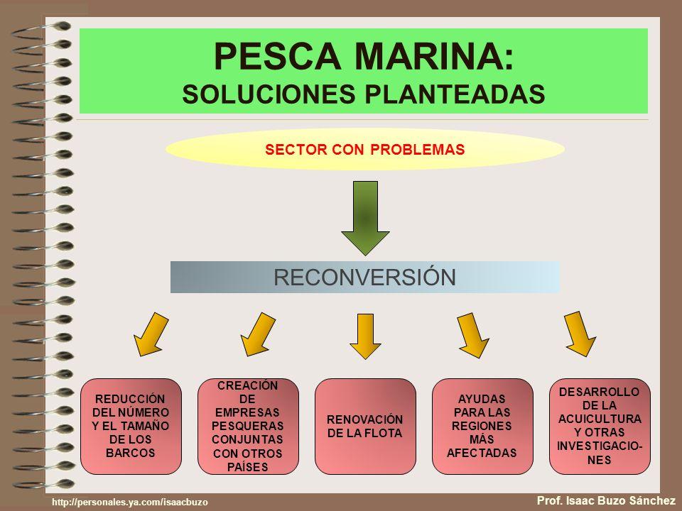 PESCA MARINA: SOLUCIONES PLANTEADAS Prof.