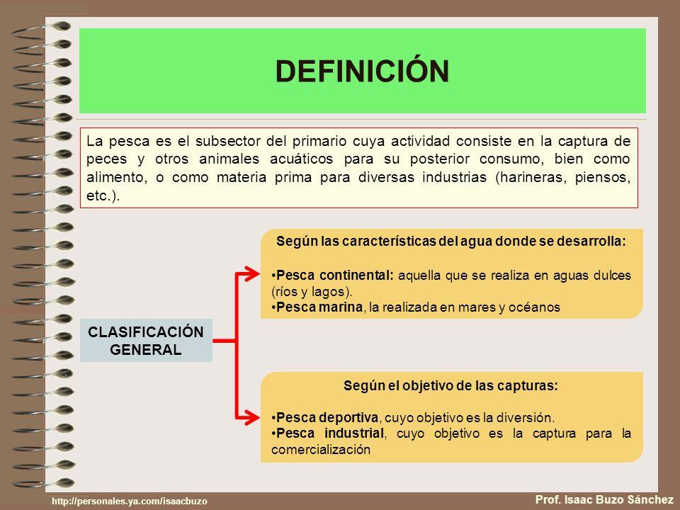 DEFINICIÓN Prof. Isaac Buzo Sánchez La pesca es el subsector del primario cuya actividad consiste en la captura de peces y otros animales acuáticos pa