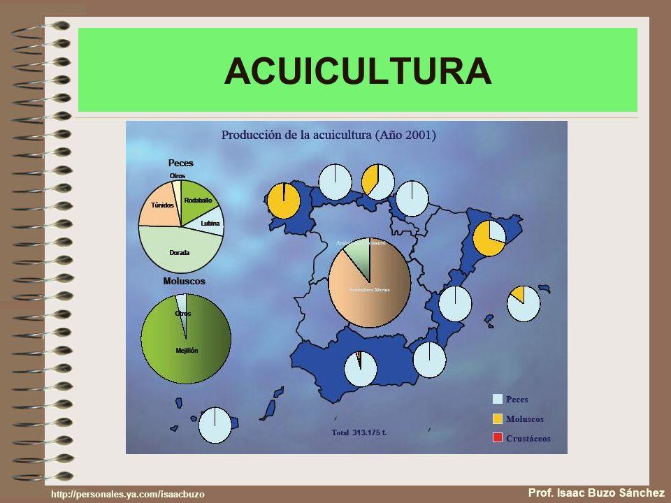 ACUICULTURA Prof. Isaac Buzo Sánchez http://personales.ya.com/isaacbuzo
