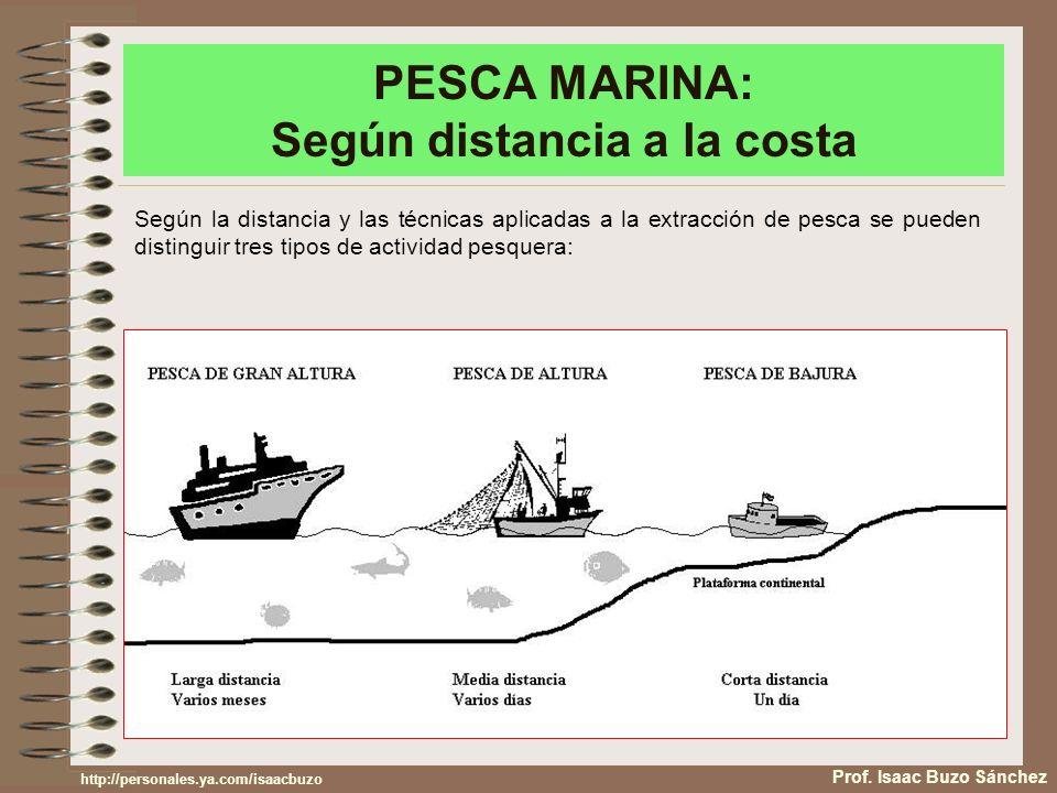 PESCA MARINA: Según distancia a la costa Prof. Isaac Buzo Sánchez Según la distancia y las técnicas aplicadas a la extracción de pesca se pueden disti