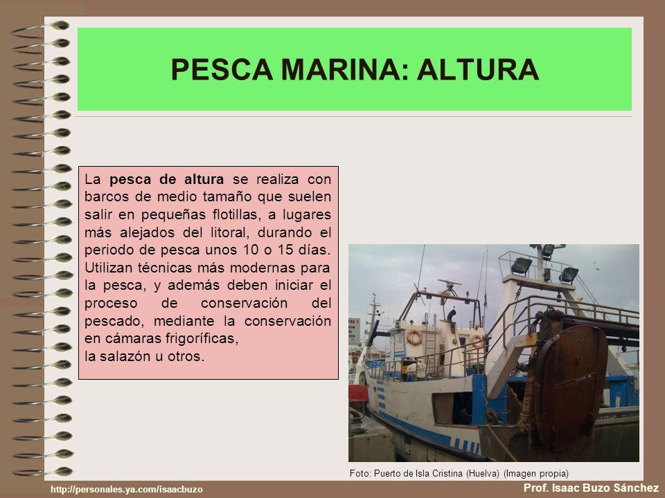PESCA MARINA: ALTURA Prof. Isaac Buzo Sánchez La pesca de altura se realiza con barcos de medio tamaño que suelen salir en pequeñas flotillas, a lugar