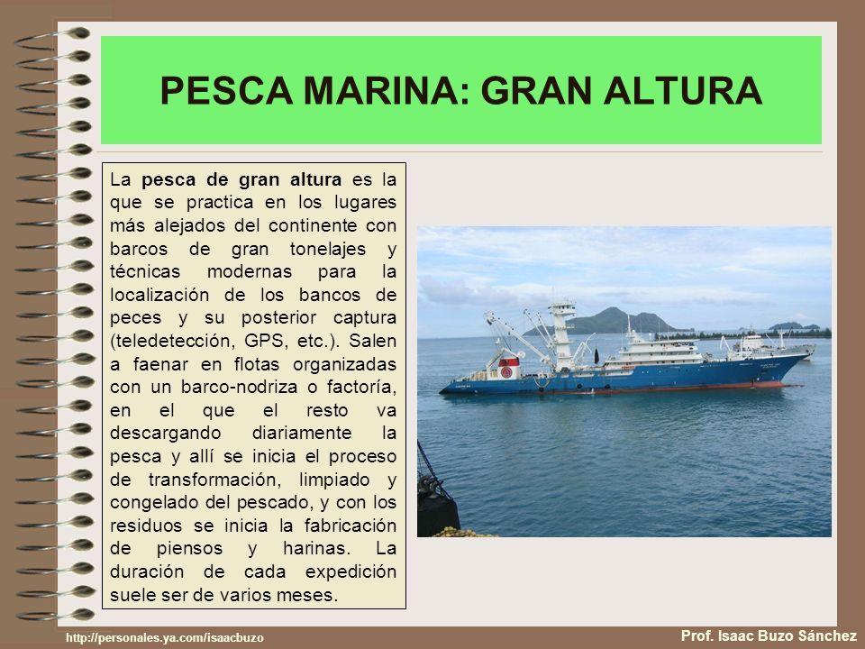 PESCA MARINA: GRAN ALTURA Prof. Isaac Buzo Sánchez La pesca de gran altura es la que se practica en los lugares más alejados del continente con barcos