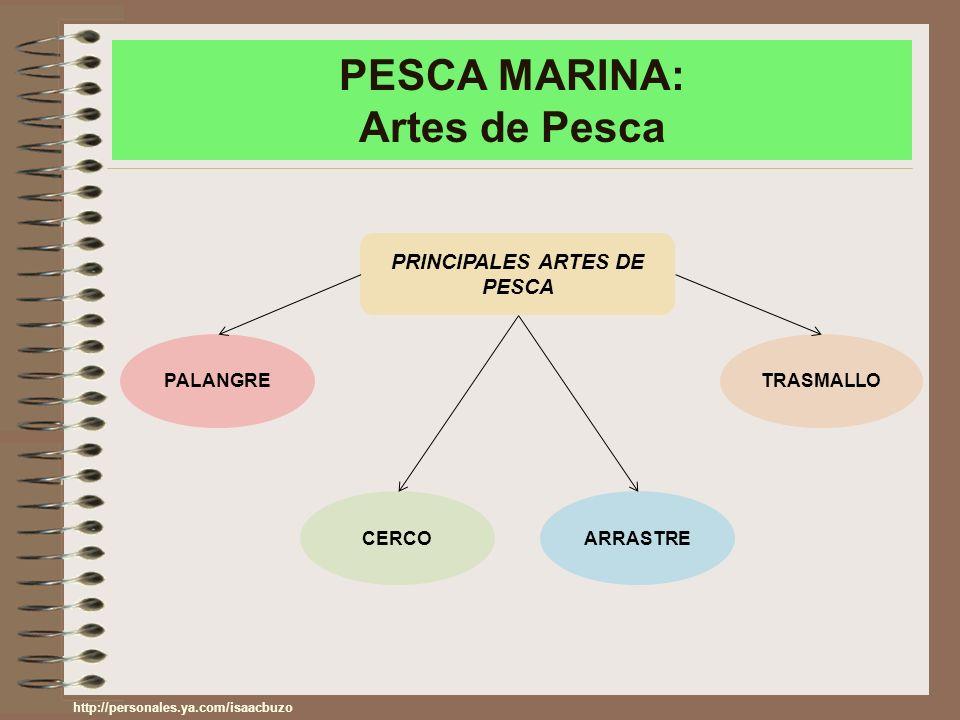 PESCA MARINA: Artes de Pesca PRINCIPALES ARTES DE PESCA PALANGRE CERCOARRASTRE TRASMALLO http://personales.ya.com/isaacbuzo