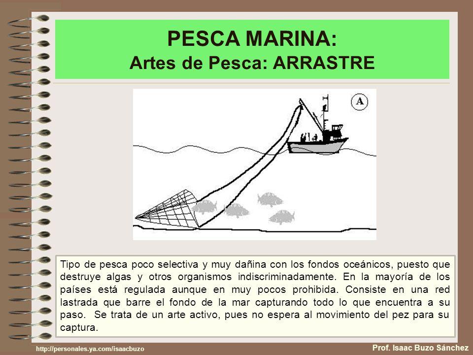 PESCA MARINA: Artes de Pesca: ARRASTRE Prof. Isaac Buzo Sánchez Tipo de pesca poco selectiva y muy dañina con los fondos oceánicos, puesto que destruy