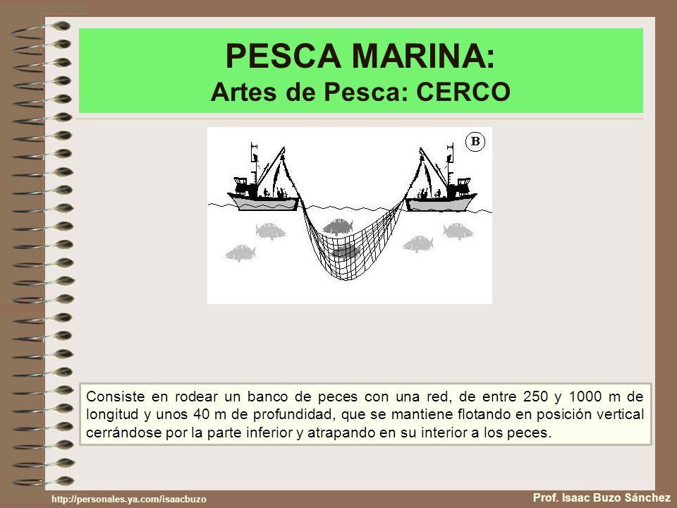 PESCA MARINA: Artes de Pesca: CERCO Prof. Isaac Buzo Sánchez Consiste en rodear un banco de peces con una red, de entre 250 y 1000 m de longitud y uno