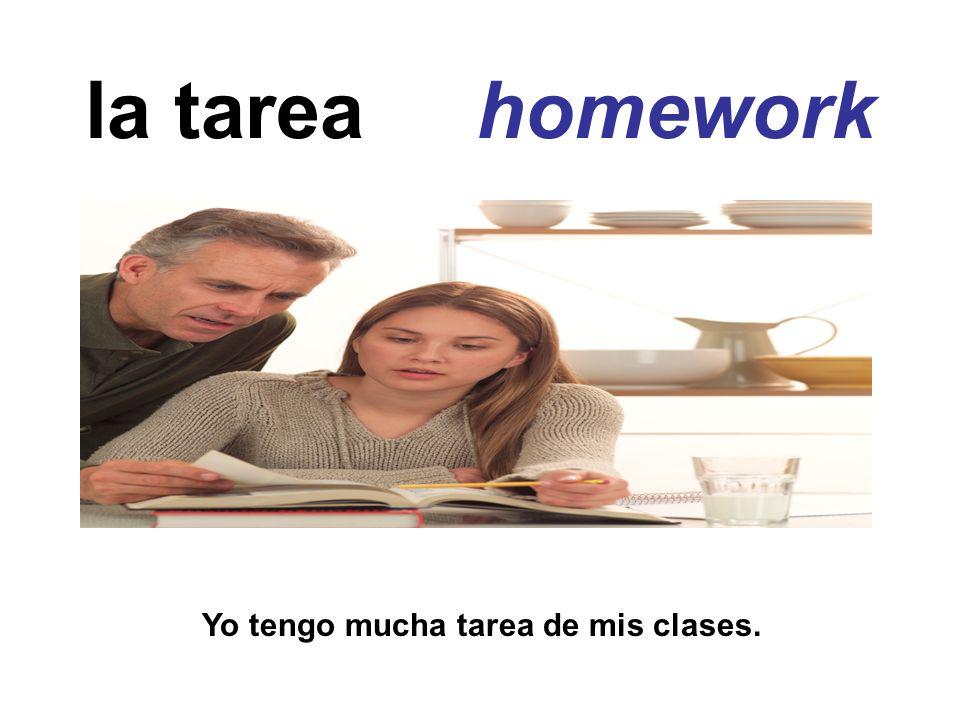 la tarea homework Yo tengo mucha tarea de mis clases.