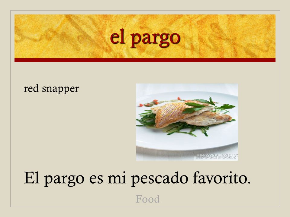 el pargo El pargo es mi pescado favorito. Food red snapper